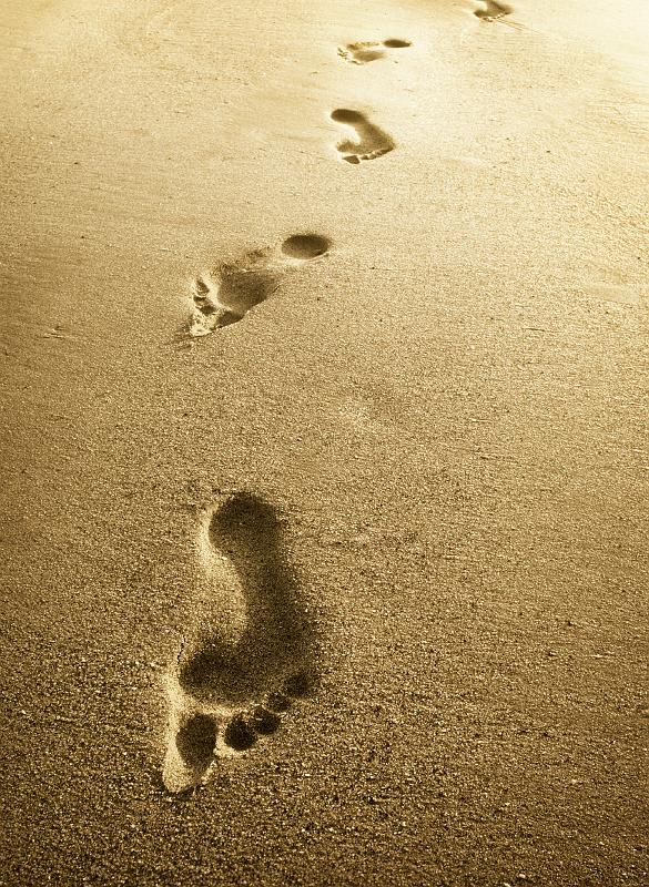 Traces Images